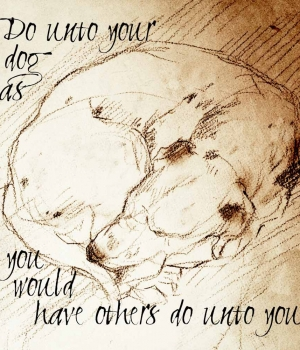 Do Unto Your Dog Sleeping Dalmatian-1000x1000